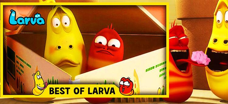 Larva vers 3D et humour en série